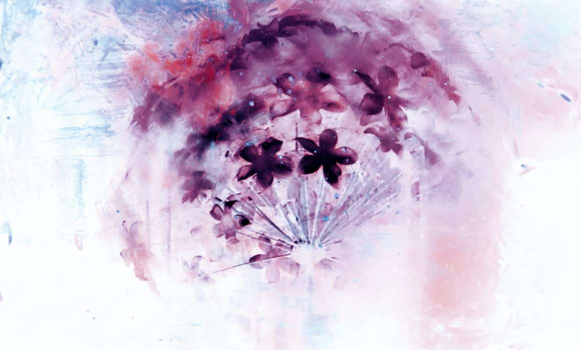 negative-image-of-flowers