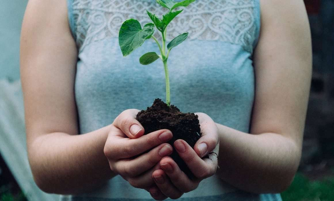 hands-holding-plant-in-soil-signal-for-growth-allowing-yourself-to-grow-blog-post